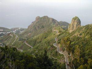 Meandering Paths. Tenerife.