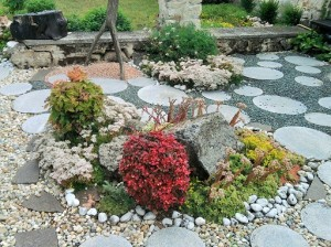 fake zen garden