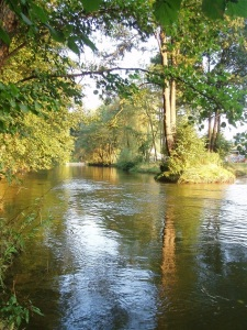 z-trip, mystic river