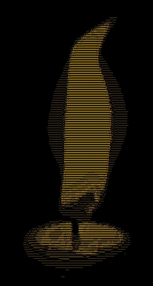 Candle, ASCII art